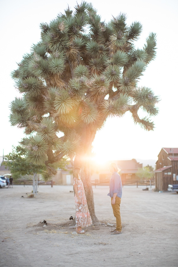 joshua_tree_engagement_christinechang_01